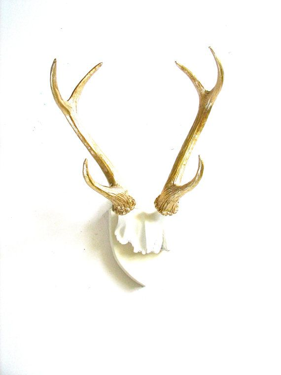 Attirant Faux Antlers Plaque Wall Hanging Rustic Modern Wall Mount Wall Decor In  White With Gold Antlers
