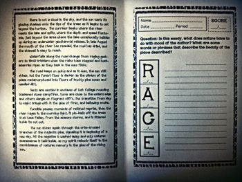 Race Assessment Booklets are to be used with the R.A.C.E. Responding to Reading Strategy. R.A.C.E. stands for:  Restate the Question Answer the Que...
