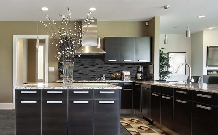 Contemporary Kitchen Design With Black Cabinets And