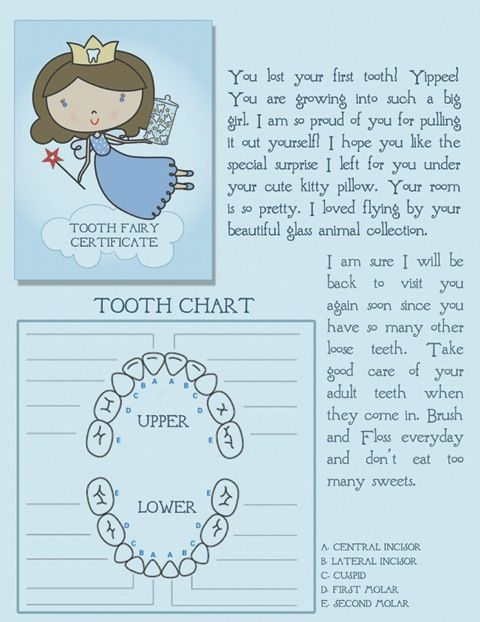 Free Printable Tooth Fairy Certificate With Tooth Chart Tooth