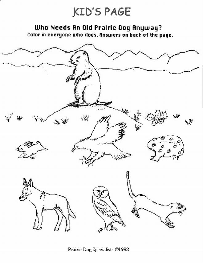 Prairie dog coloring page 14 jpg 659x852