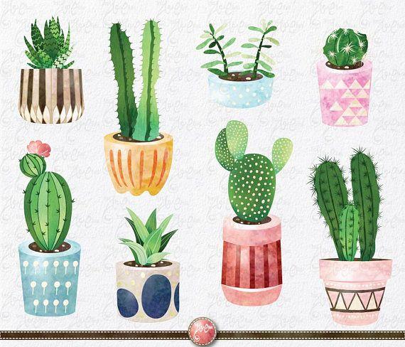 Cactus succulent. Clip art pack watercolor