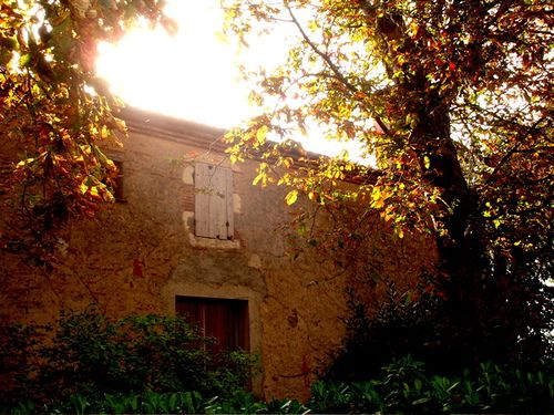Old house in Espalais, France.  Sunlight through the leaves.