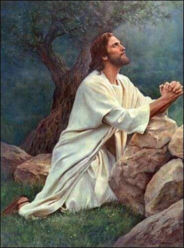 Seguir a jesus...
