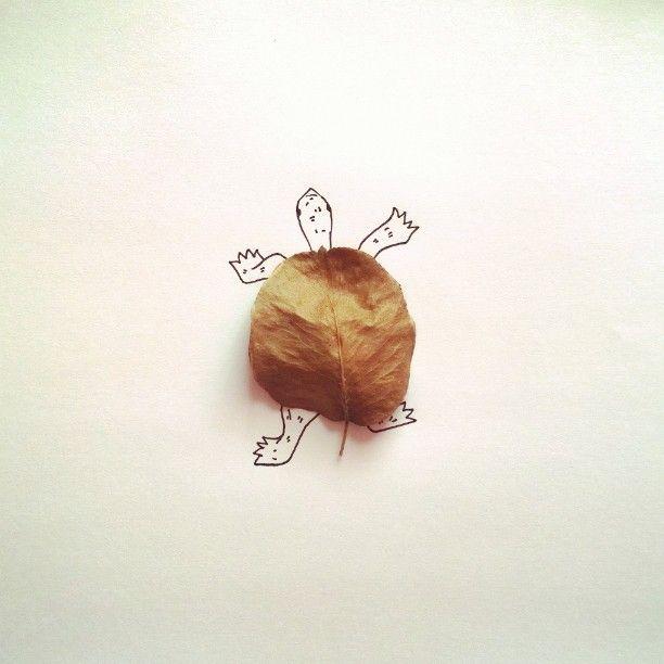 #leaf #autumnleaf #yellowleaf #autumn #turtle #reptile #animal #shell #followme #instagood #photooftheday #cute #art #drawing #painting #creative #лист #осеннийлист #желтыйлист #осень #черепаха #рептилия #животное #панцирь #арт #рисунок #иллюстрация #креатив #рисование #aler_draw
