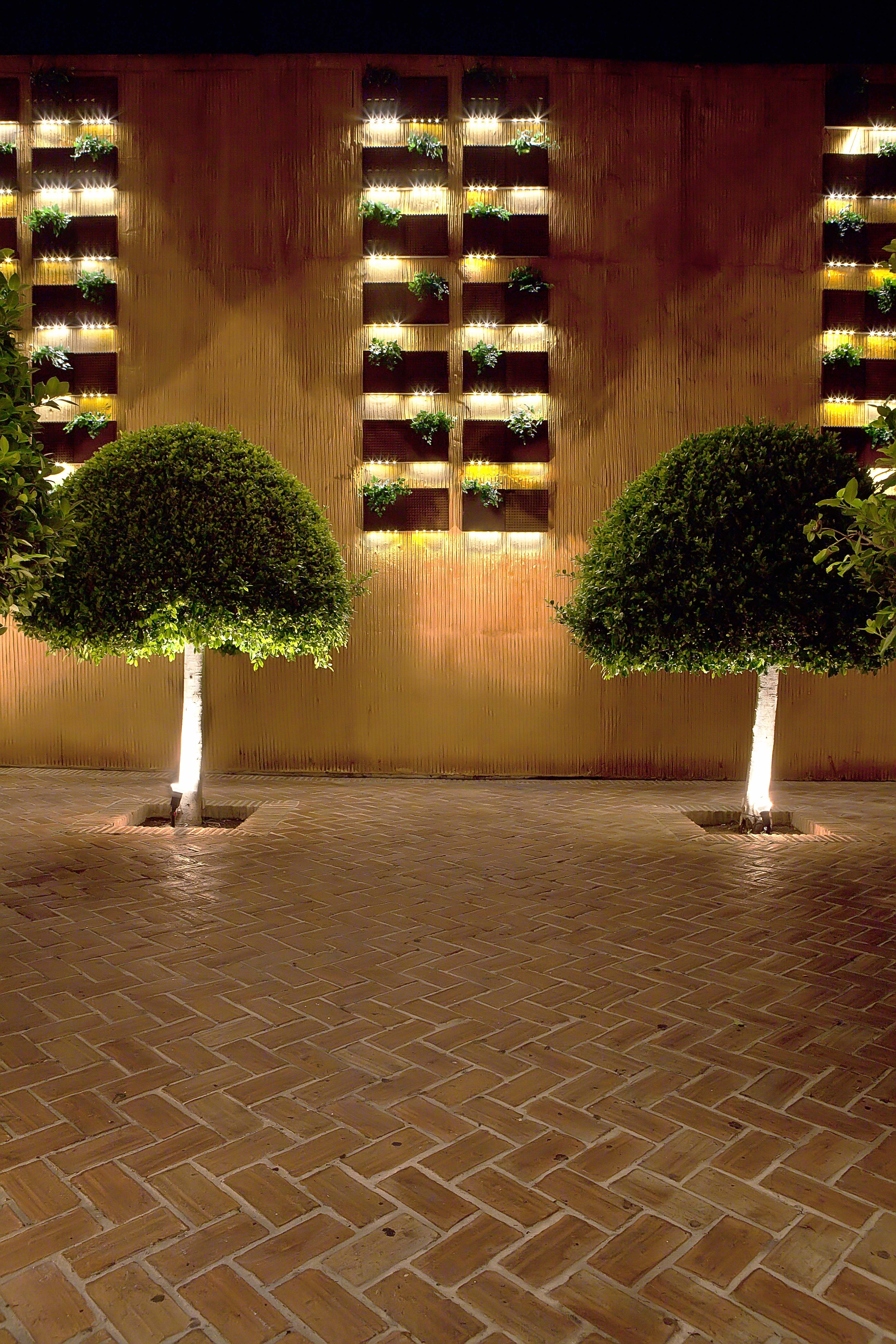 Ideas de paisajismo de patio estilo vanguardista for Iluminacion exterior jardin
