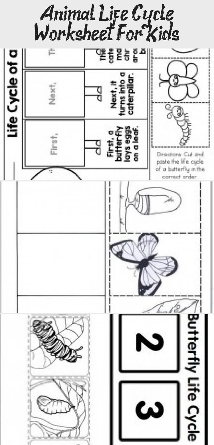 Predownload: Animal Life Cycle Worksheet For Kids In 2020 Worksheets For Kids Life Cycles Animal Life Cycles [ 1560 x 750 Pixel ]