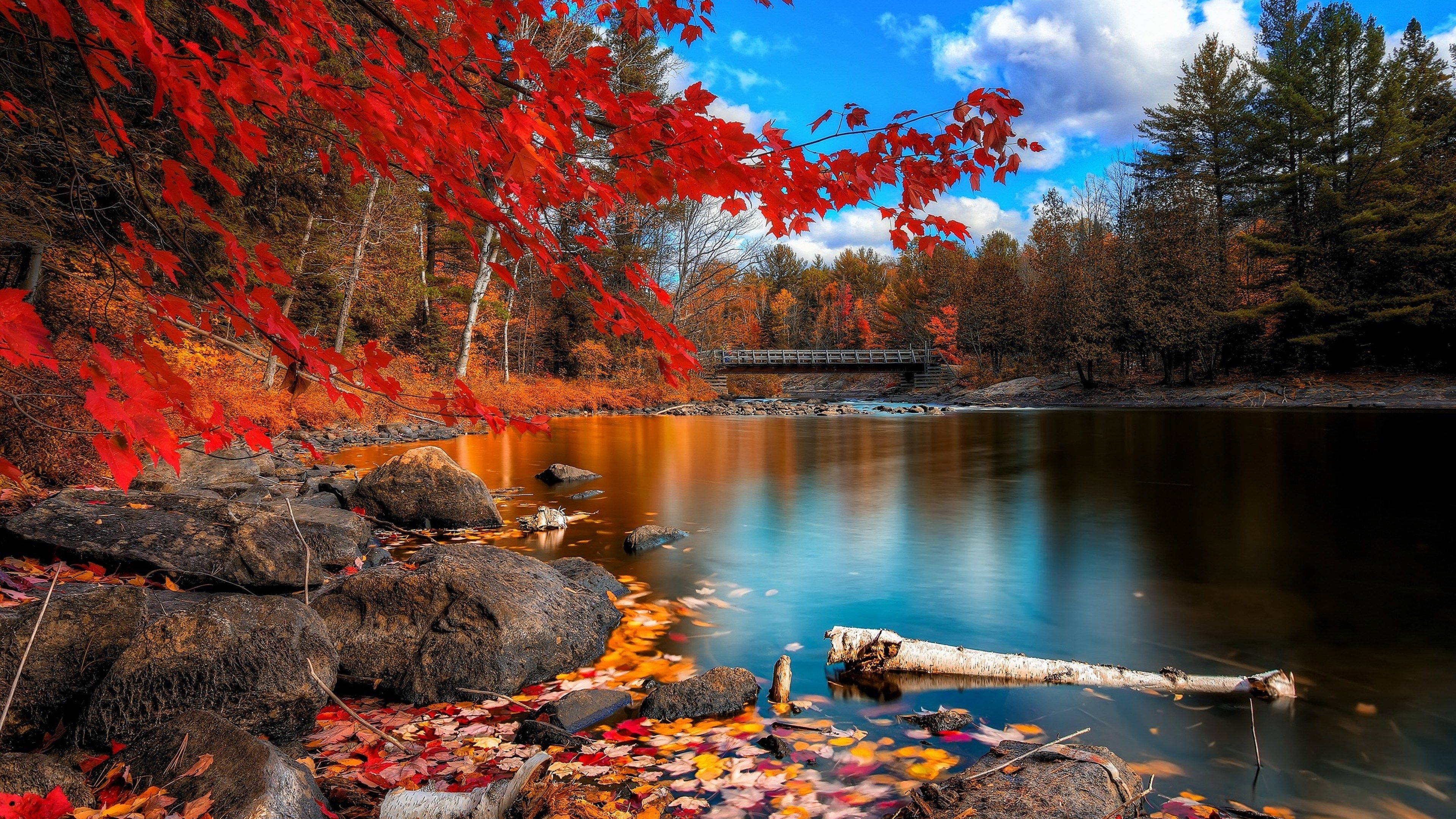 3840x2160 Nature 4k Desktop Wallpaper Cool Autumn Scenery Nature Desktop Hd Nature Wallpapers