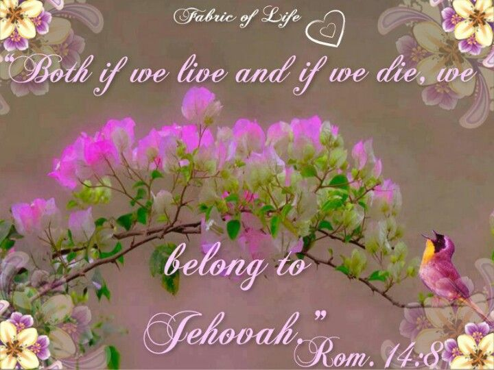 """Ro 14:8~  """"For both if we live, we live to Jehovah, and if we die, we die to Jehovah. Therefore both if we live and if we die, we belong to Jehovah."""""""