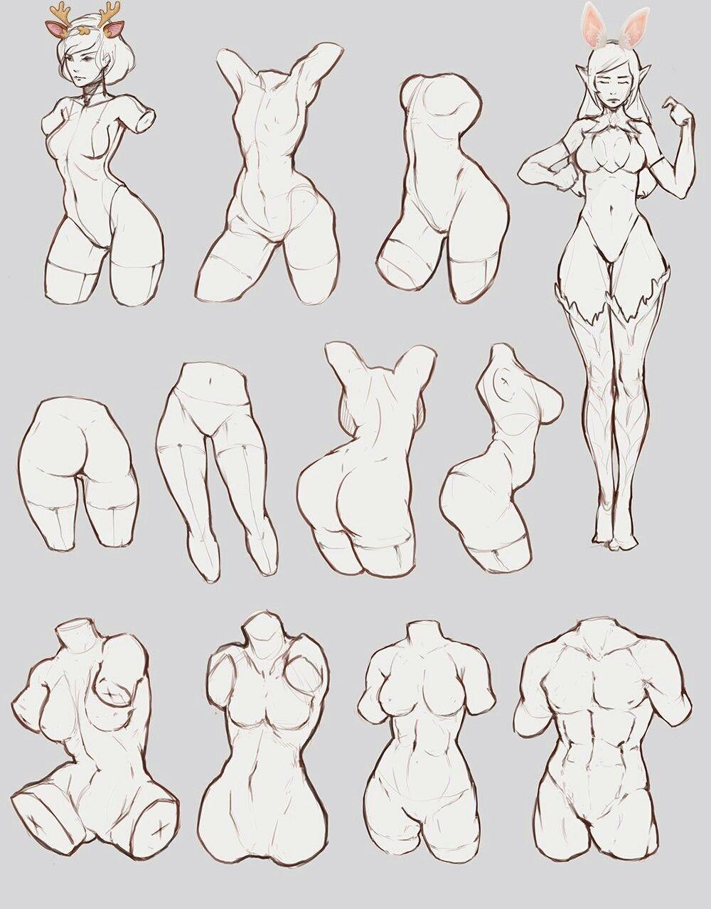Pin de Geraldine Rodriguez en Cuerpo mujer | Pinterest | Anatomía ...