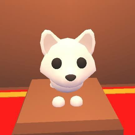 Rare Fox Adopt Me In 2020 Adoption My Roblox Pets
