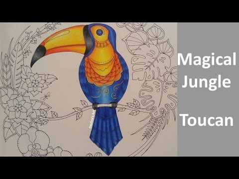 Magical Jungle Color Along Of The Toucan Part 1 Coloring Book