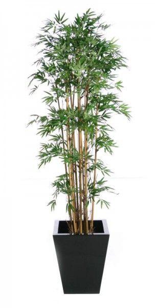 Artificial Japanese Bamboo Screen Uv Resistant Free Uk Delivery Piante Da Interno Piante Giardinaggio