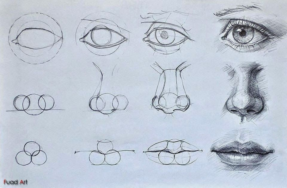 pin by ken kimura on learning to draw pinterest drawings art