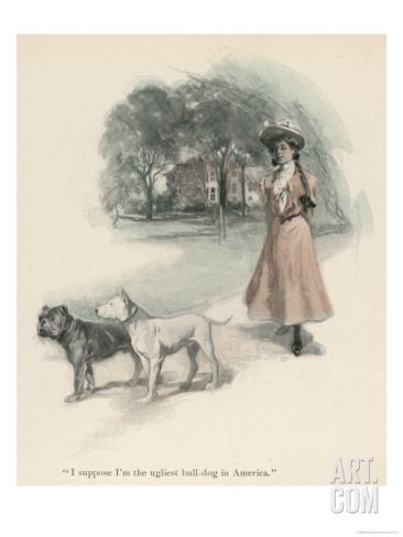 An American Girl Walks with an English Bull Terrier and and a Bulldog Giclee Print at Art.com