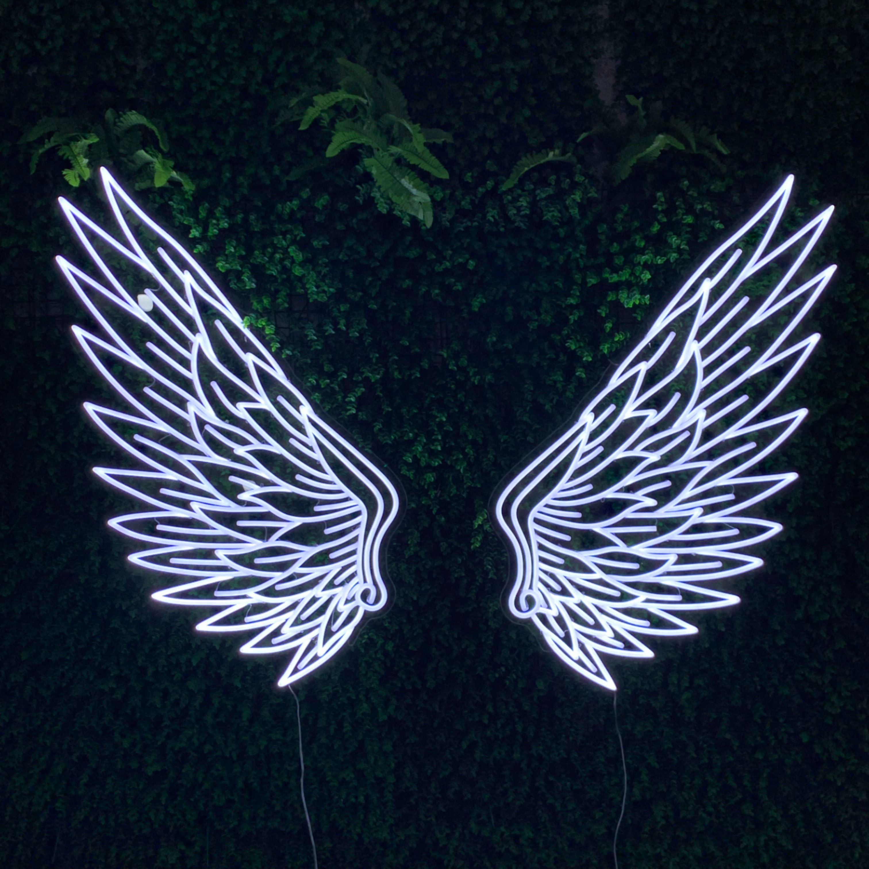 Angel Wings Neon Sign Neon Signs Wings Wallpaper Neon Wallpaper Aesthetic iphone angel wings wallpaper