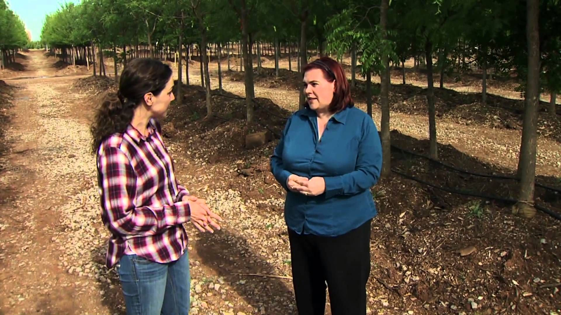 In this segment Oklahoma Gardening host Kim Toscano joins Nicki ...