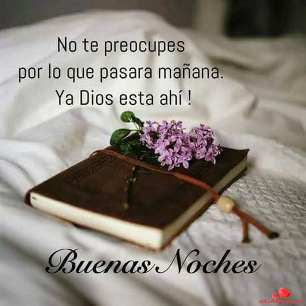 Buenas Noches Amigos Whatsapp 203 | Good night greetings, Good night  prayer, Good night quotes