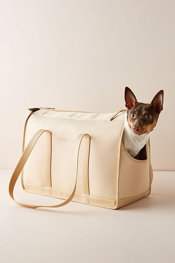 Wild One Dog Carrier Dog carrier, Wild ones, Dogs