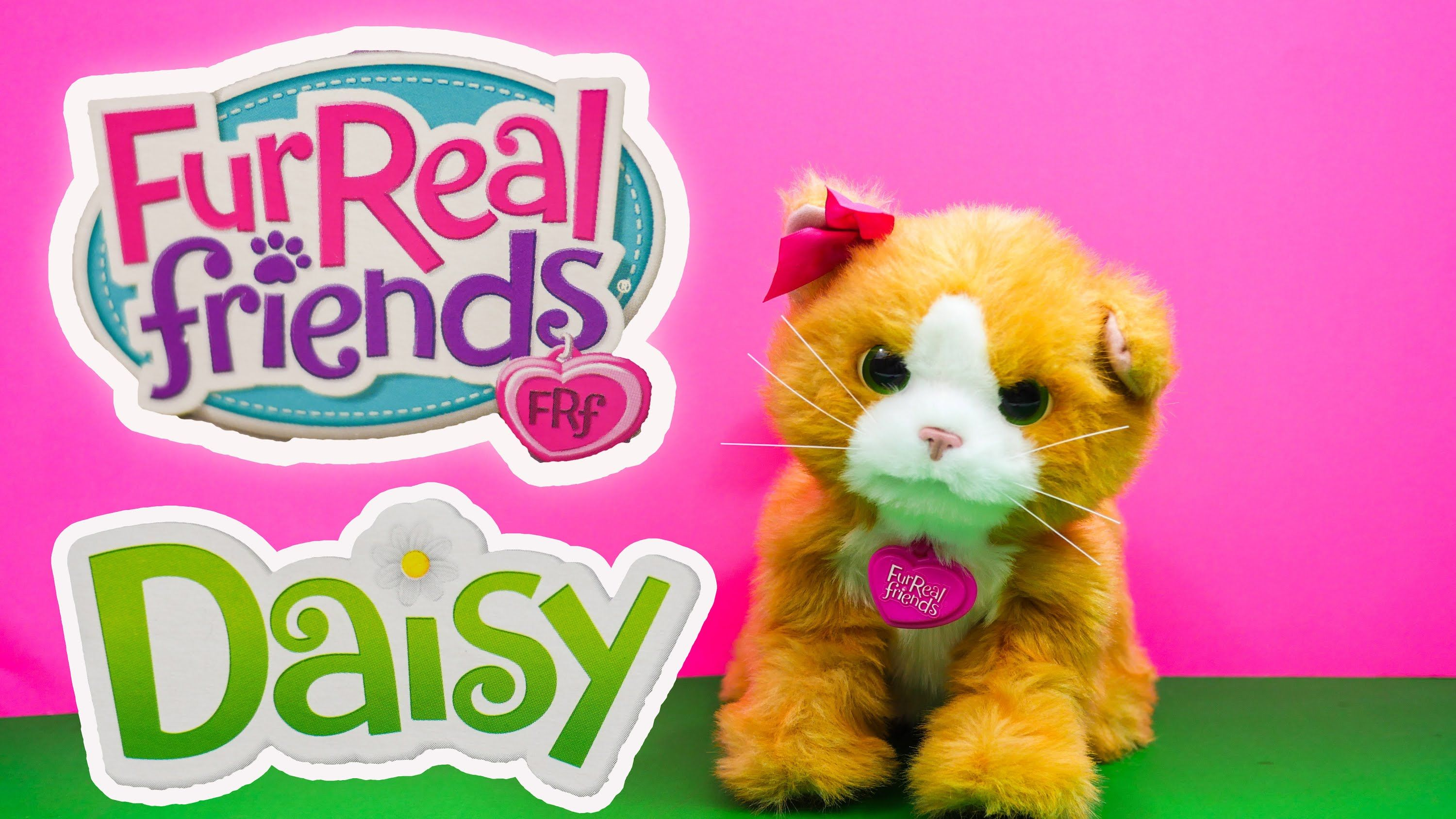 Fur Real Friends Daisy Fur Real Kitty Cat Daisy Youtube Toy Review Fur Real Friends Real Friends Daisy