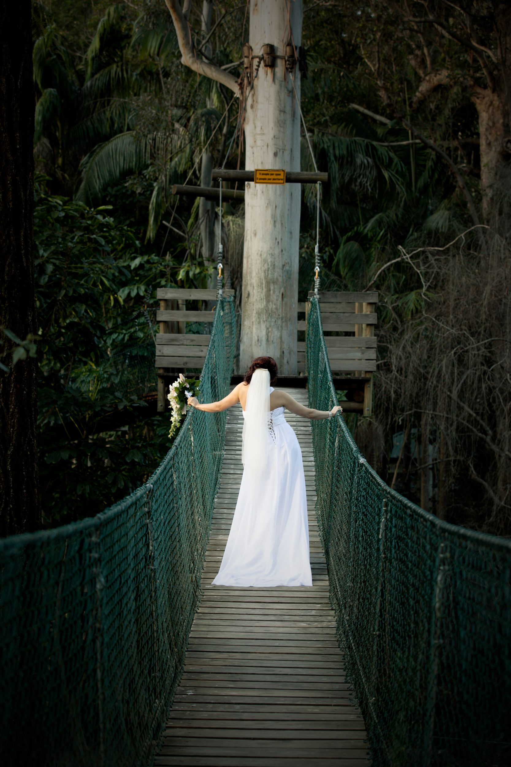 Have Your Wedding At Our Rainforest Amphitheatre Choose From 4 Beautiful Reception Venues For An Unforgettable Day On Tamborine Mountain
