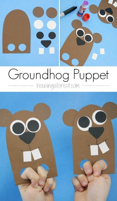 Diy Finger Puppet Groundhog Day Craft For Kids Housing A Forest