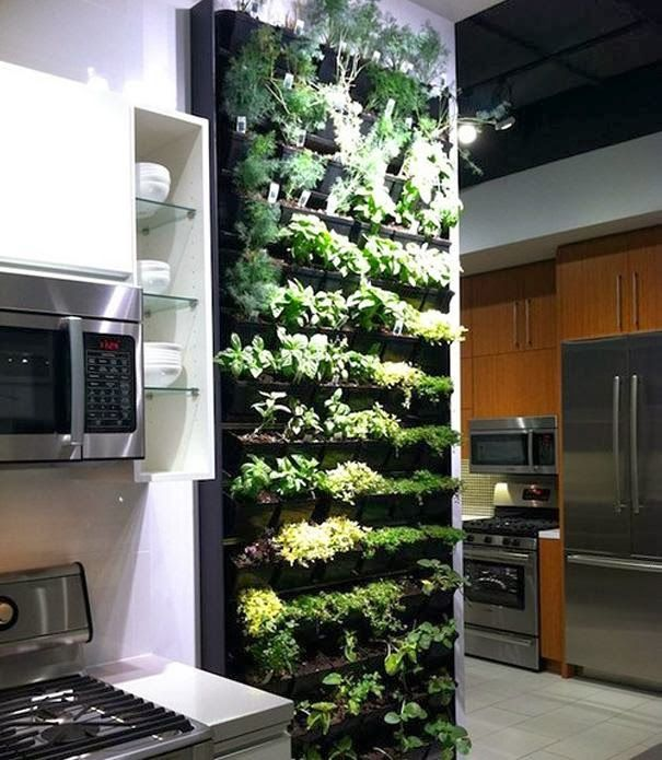 Attirant Indoor Vertical Herb Garden