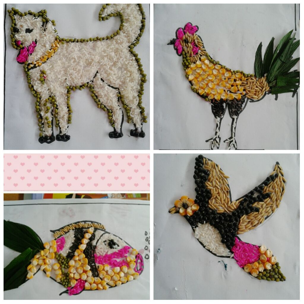 20+ Most Popular Animal Grain Collages