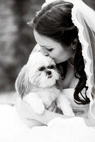 Hermosa foto de la novia con su mascota donde nos muestra como incorporar la mascota en el dia de la boda  (Fotografia: Lindsey Lee Photography)