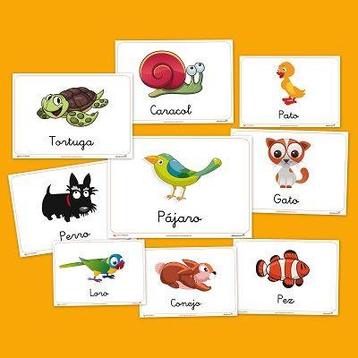 Animales domesticos Recursos para el aula: Animales domesticos