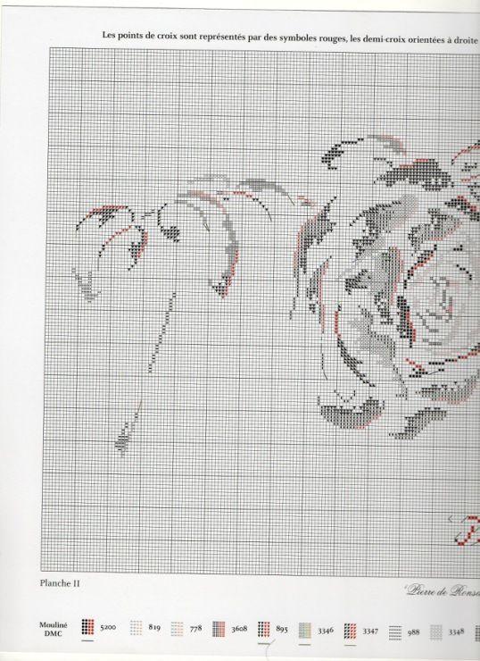 Gallery.ru / Фото #2 - Roses + бонус - rabbit17