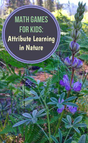 Math Games for Kids: Learning About Attributes in Nature {GoExploreNature for @childhood101}
