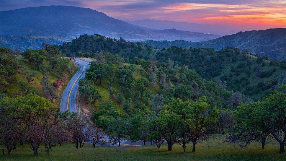Montanha, floresta, árvores, estradas, pôr do sol, natureza Vetor