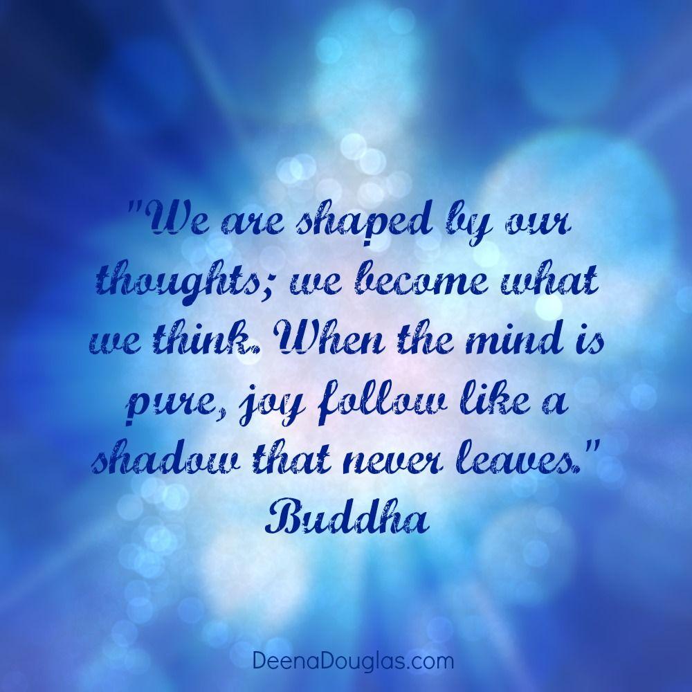 Amazing Buddha Quote ·  Design