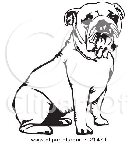 bulldog coloring pages Clipart Illustration of a Cute And Obedient