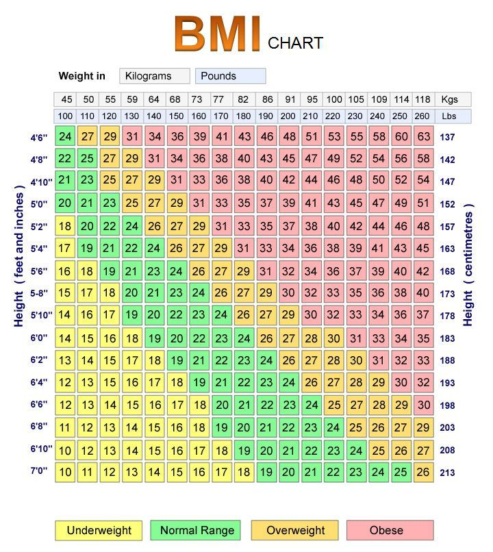 Bmi Index Chart Template Adult Bmi Chart Bmi Chart Templates