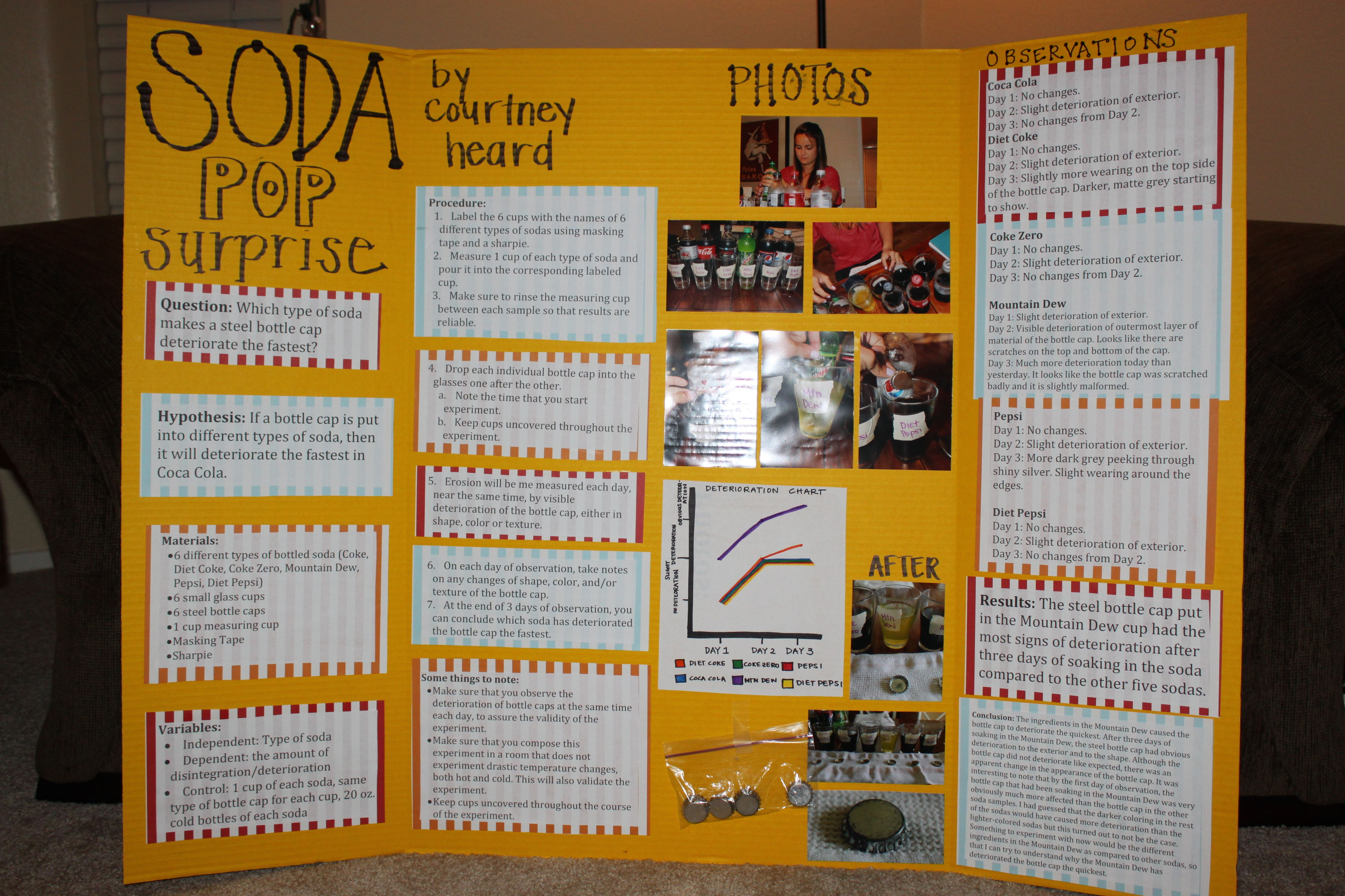 Science Fair Project Amp Rubric