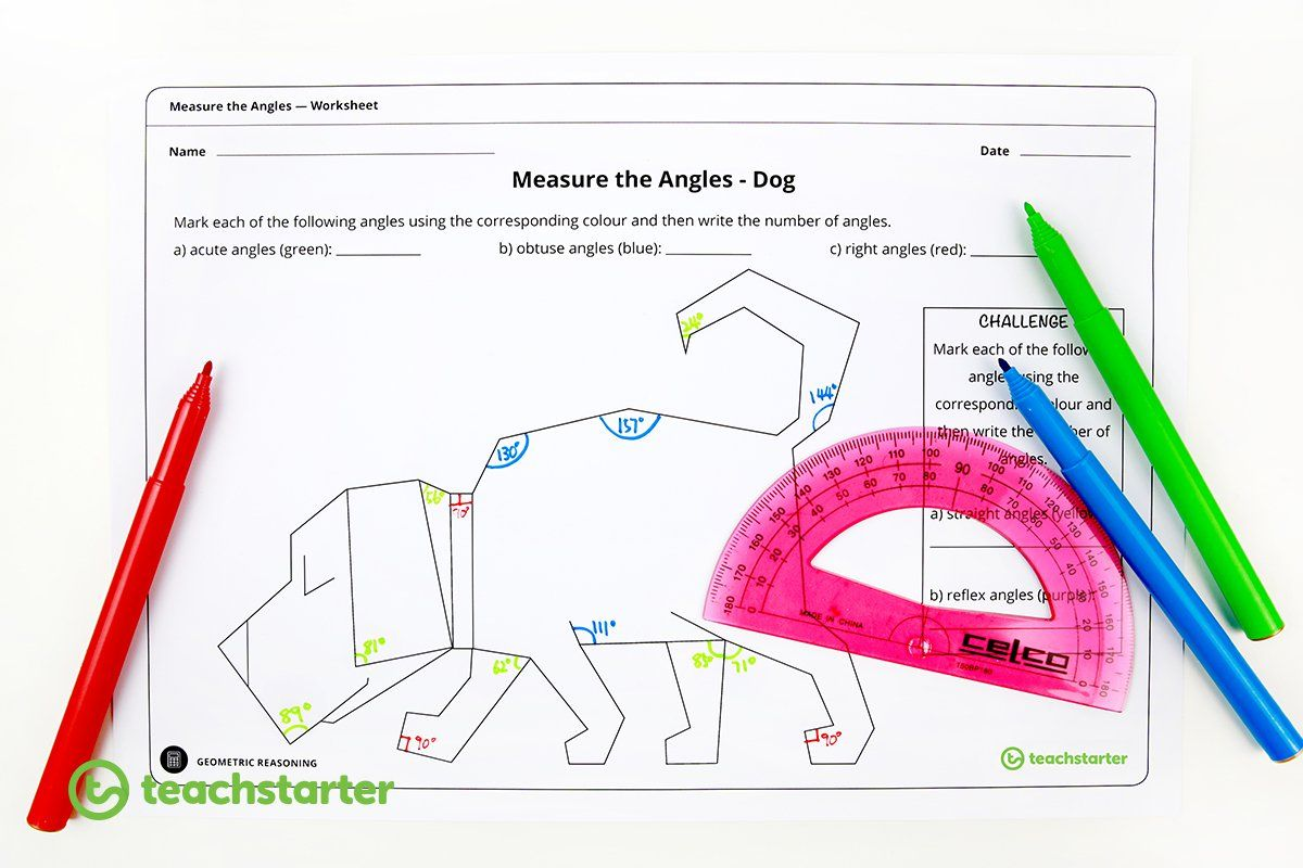 Measure The Angles Worksheet