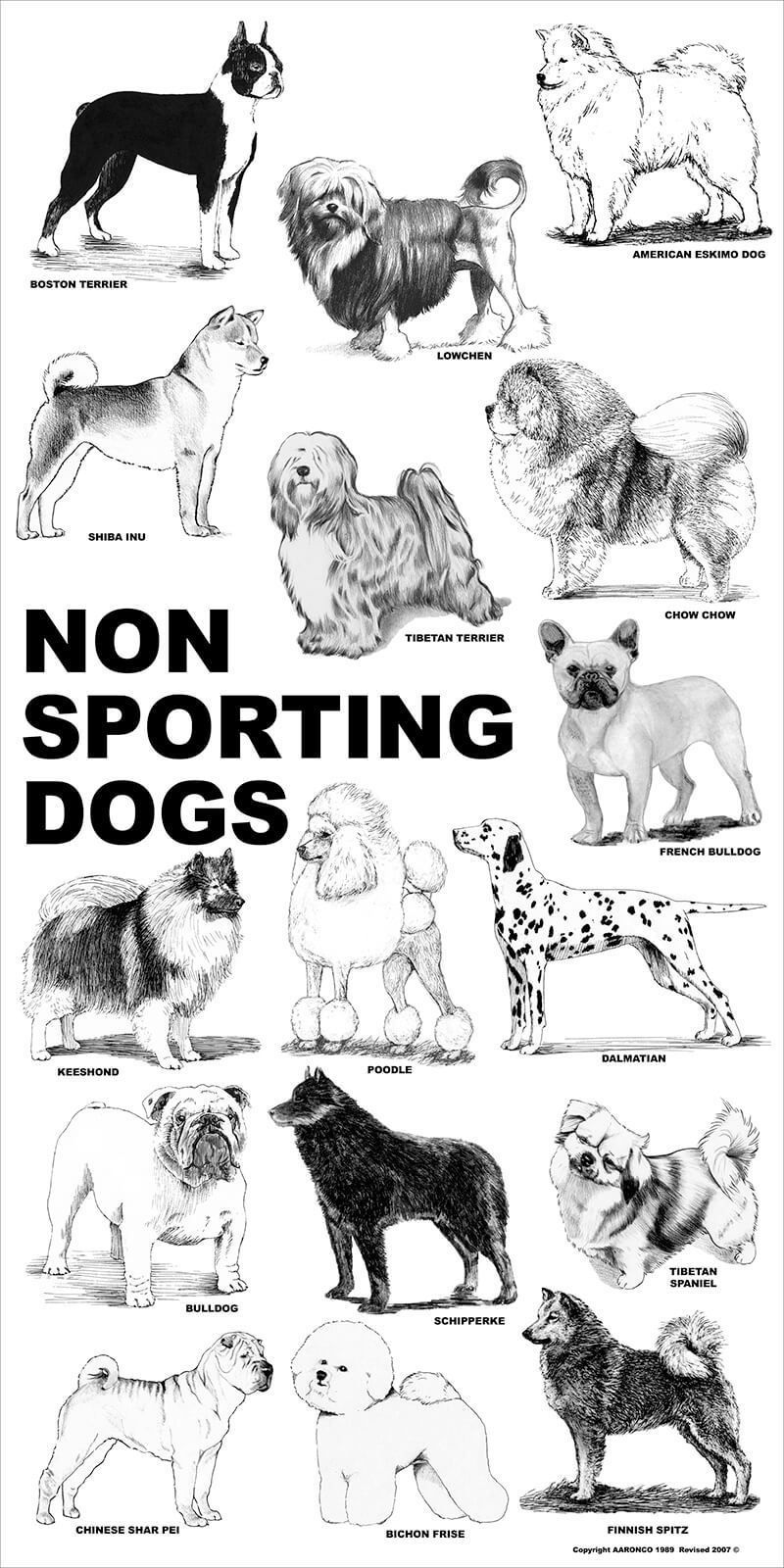 Aaronco Poster Non Sporting Dogs Dog Poster Dog Breeds Dog