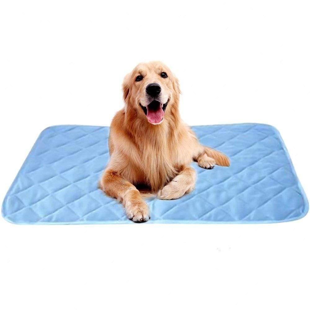 Dog Cooling Mat Bed Dog Cooling Mat Cool Dog Beds Pet Cooling Mat