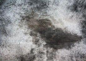 Concrete Texture2 - http://www.dawnbrushes.com/concrete-texture2/