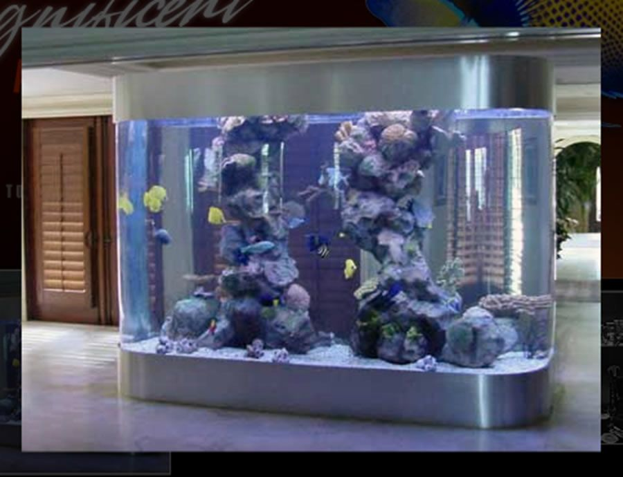 luxury and custom aquarium design for residential home. Black Bedroom Furniture Sets. Home Design Ideas