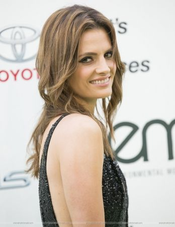 Actress Stana Katic arrives at AFI FEST 2013 Opening Night
