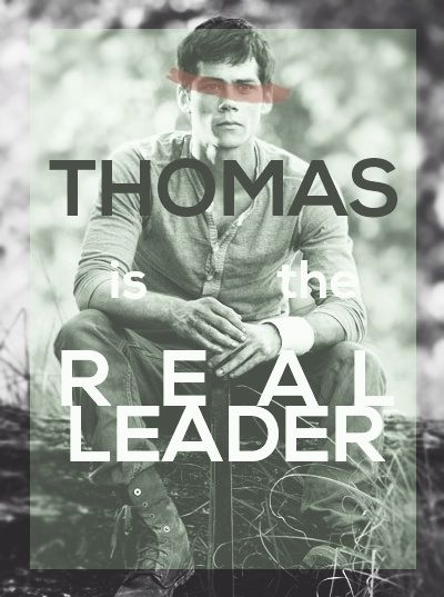 The Maze Runner Can T Wait For This With Images Maze Runner Trilogy Maze Runner Maze Runner Series