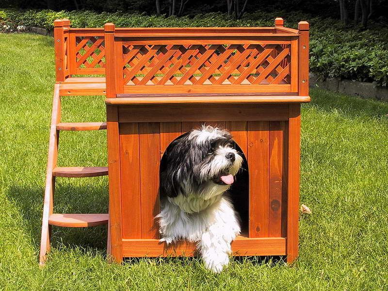 Luxury Dog Houses indoor dog houses luxury design with stairs ~ http