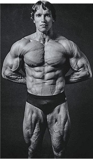 Arnold Schwarzenegger Blueprint Trainer Mass Training Overview - new arnold blueprint ebook