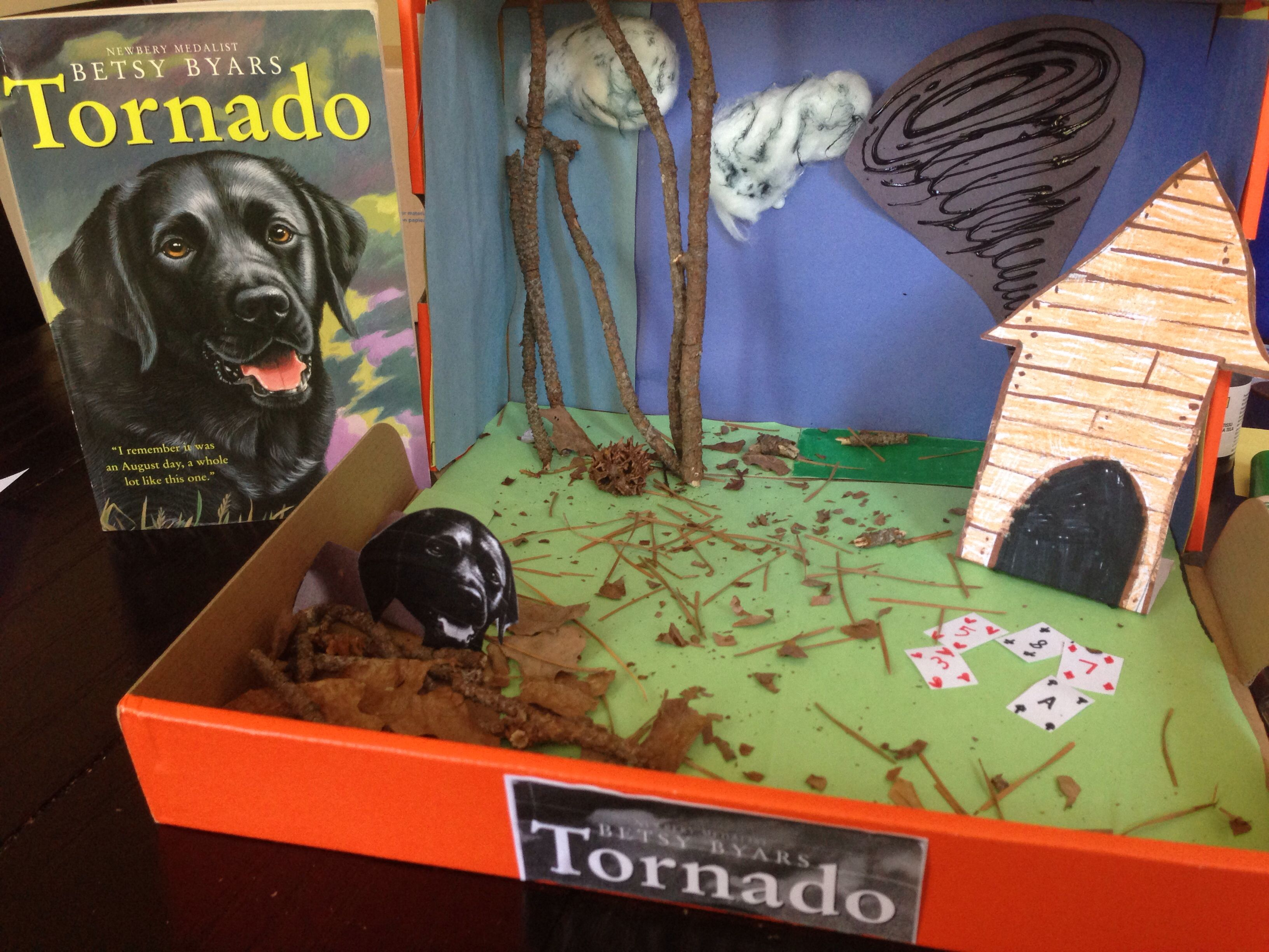 book report diorama instructions Book report: 30 creative ways to  illustrate a scene or character from the book  on a t-shirt • write a short summary of the  of the book • include instructions  about how to play  create a diorama of a scene from the book • create a  scene.