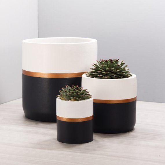 BRONZE _ Concrete Succulent Planter _ 2 sizes, 3 colors _ Gold Cement Cactus Cactus Pot Pencil Cup
