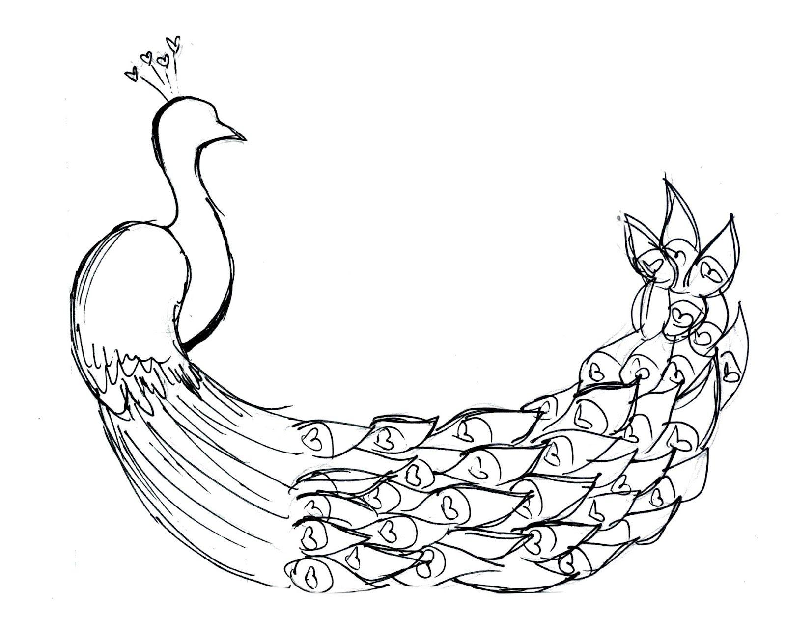 http://4.bp.blogspot.com/-BKKhwOTQ9qk/T8aHLEDJQTI/AAAAAAAAASw/vXoOSkN-xJQ/s1600/peacock+sketch.jpg