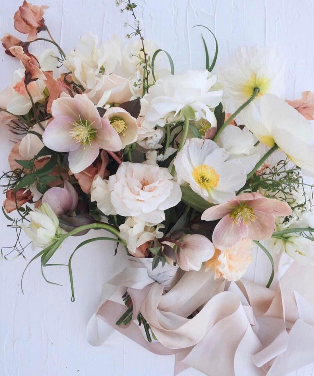 Pin by elizabeth on f l o w e r s pinterest flowers